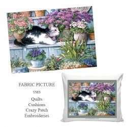 B&W cat in garden picture